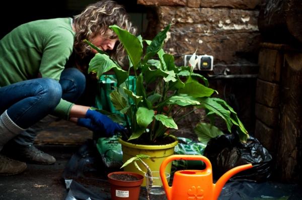 """""""Áramlik a jóság!"""" Interjú a szimPLANT: belvárosi dzsungelmóka szervezőivel"""