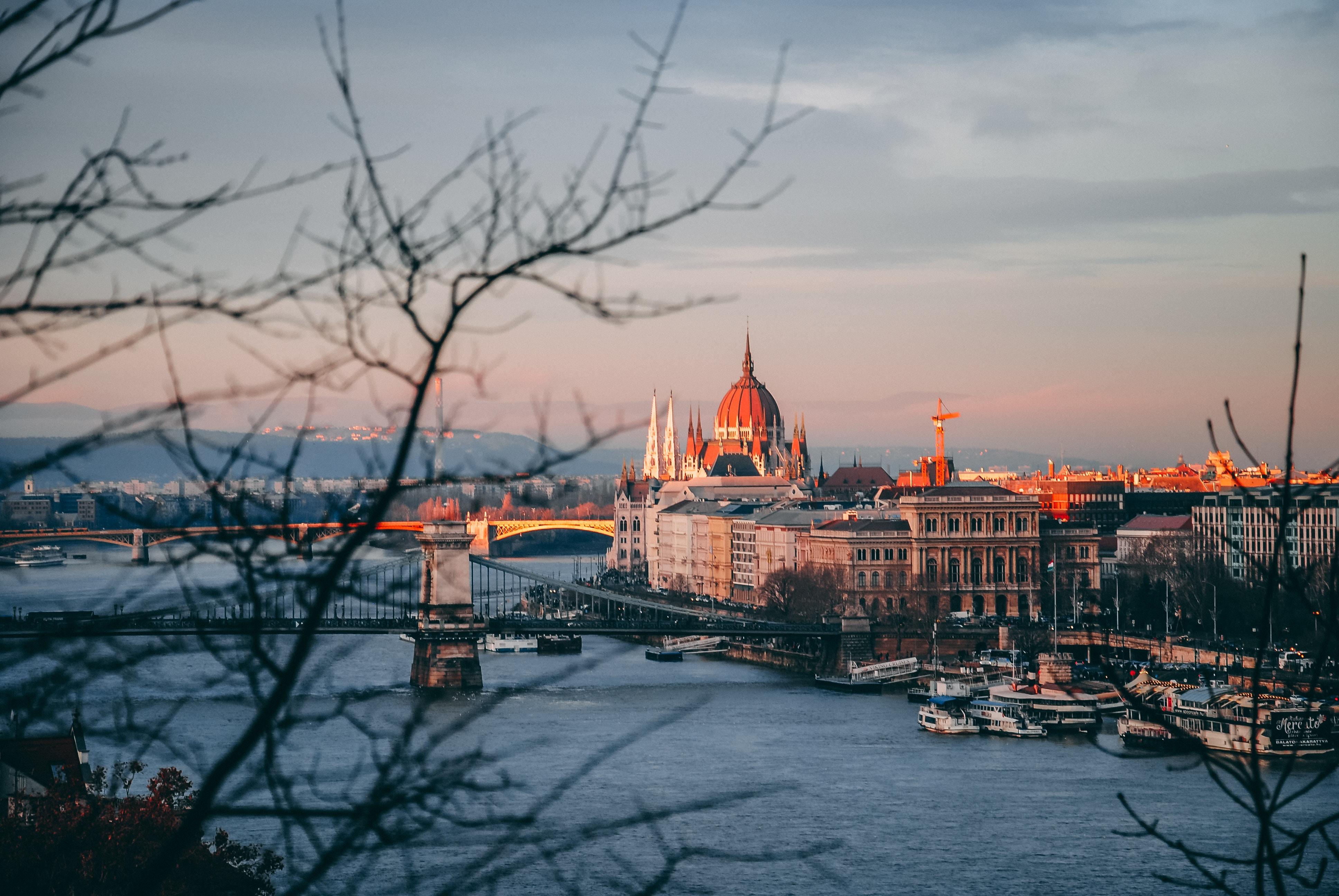 Urban Jungle Budapest novemberi programajánló
