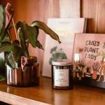 Különleges szójagyertya Budapest- és növényrajongóknak