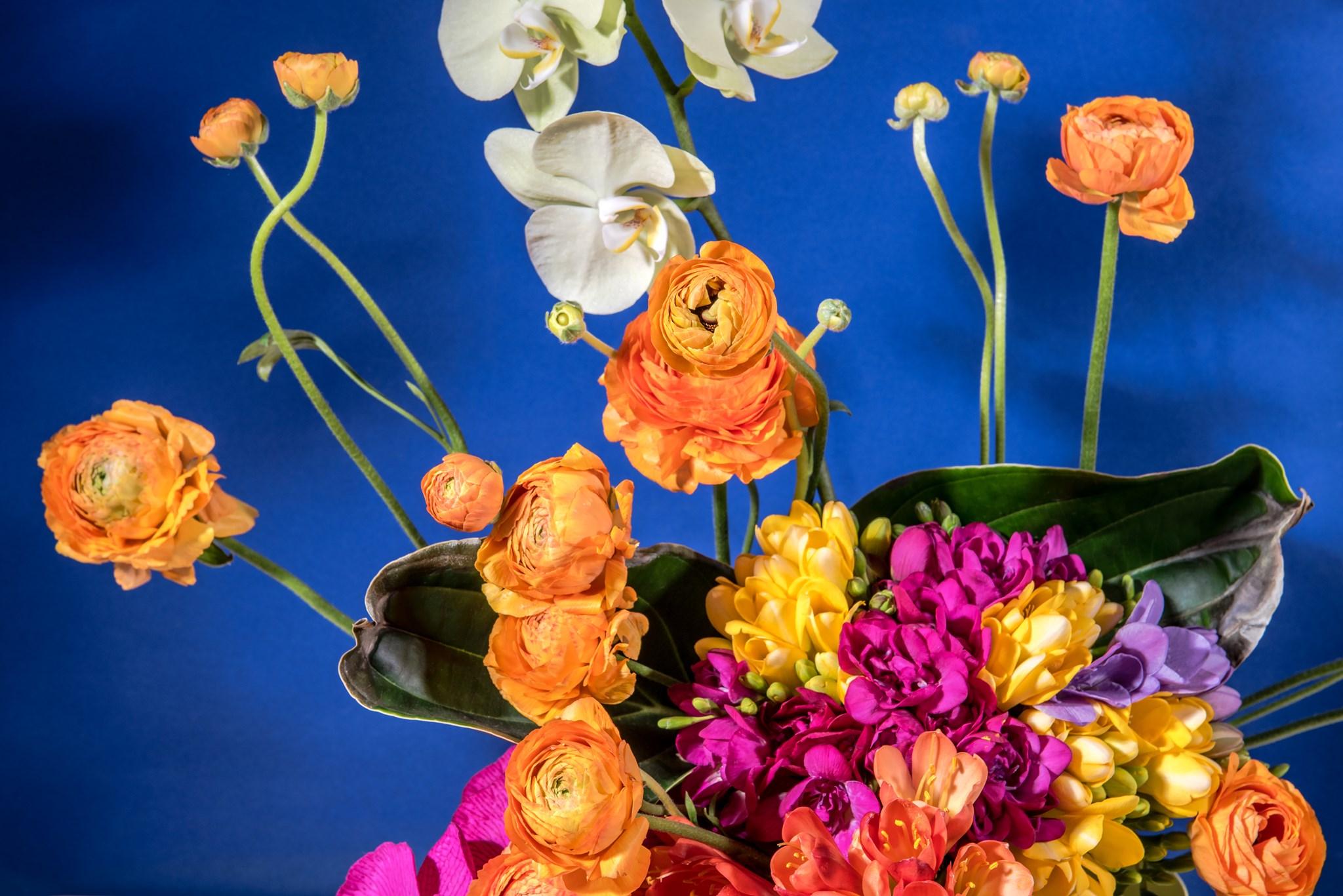 3 Instagram oldal, amit követned kell, ha szereted a virágokat